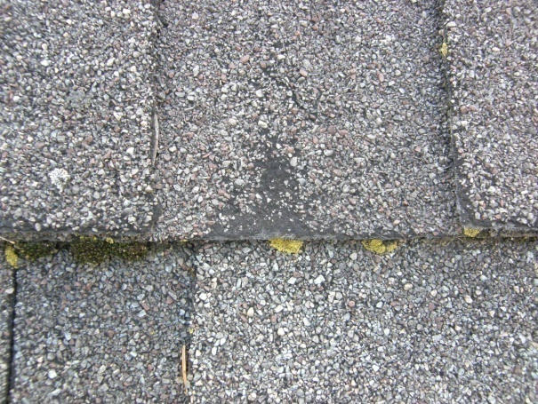 Do I Need A New Roof Park Place Construction Roofing